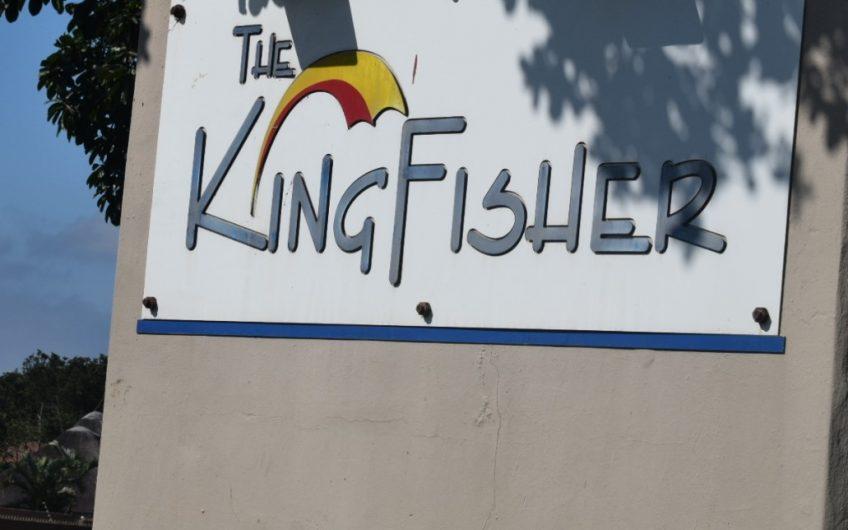 Kingfisher 26