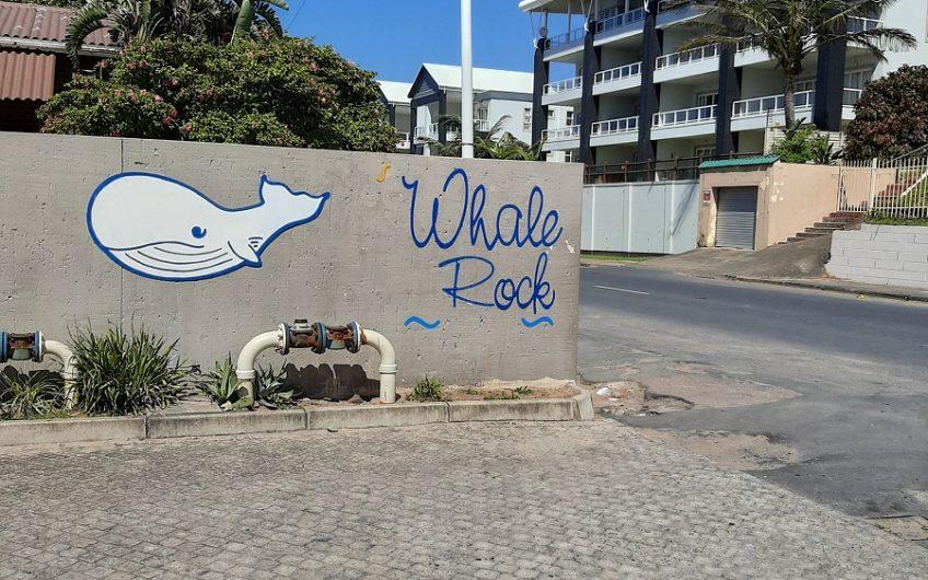Whale Rock 18